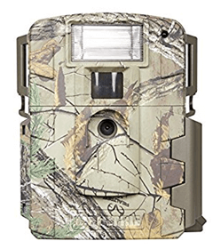 Digital Trap Camera